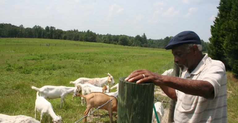 Pee Dee Black Farmer Storytelling Project