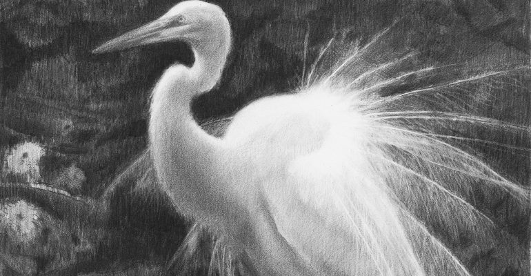 Special Reception Featuring The Egret's Plumes by Archibald Rutledge